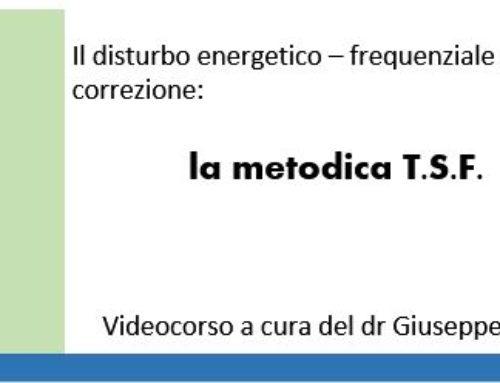 Videotutorial 2017